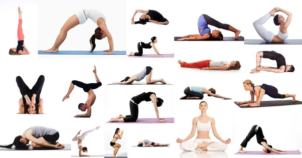 Types Of Yoga Vinyasa Yoga Academy